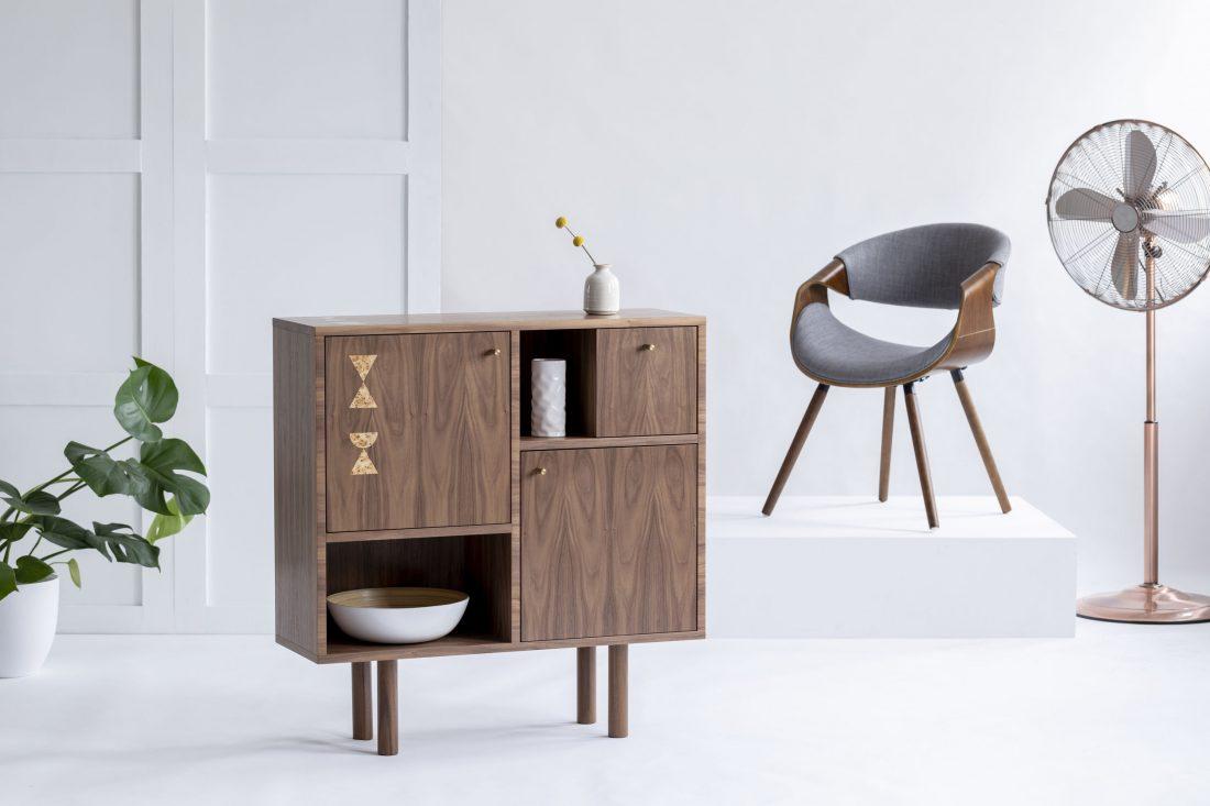 Midcentury Modern Interior Design for Asheville Homes